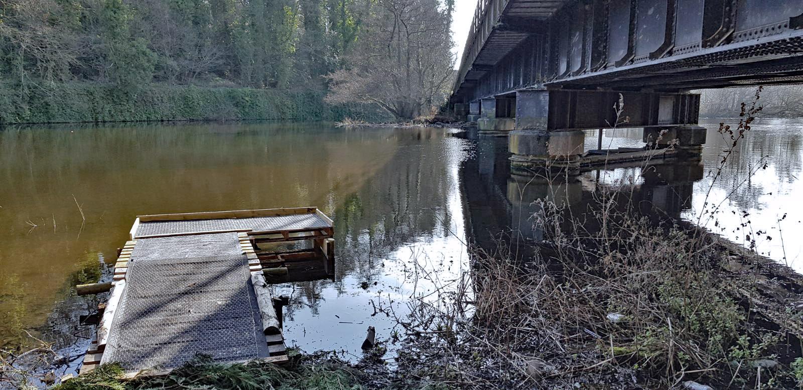 Fishing peg improvement work on the River Derwent at Belper