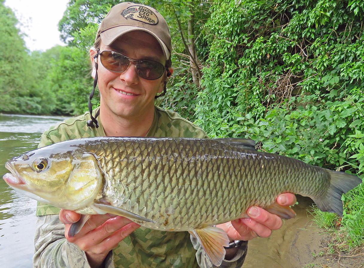 Specimen chub caught from the River Derwent at Belper