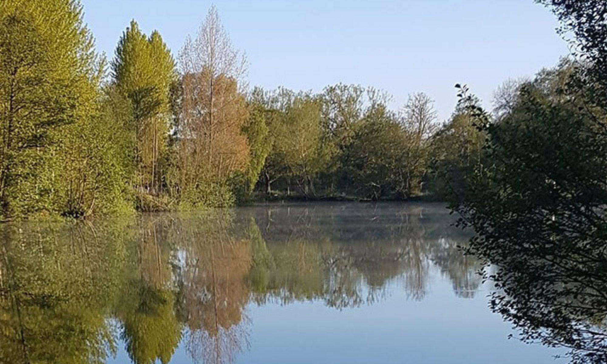Fishing match at Wyver Lane Pond, Belper